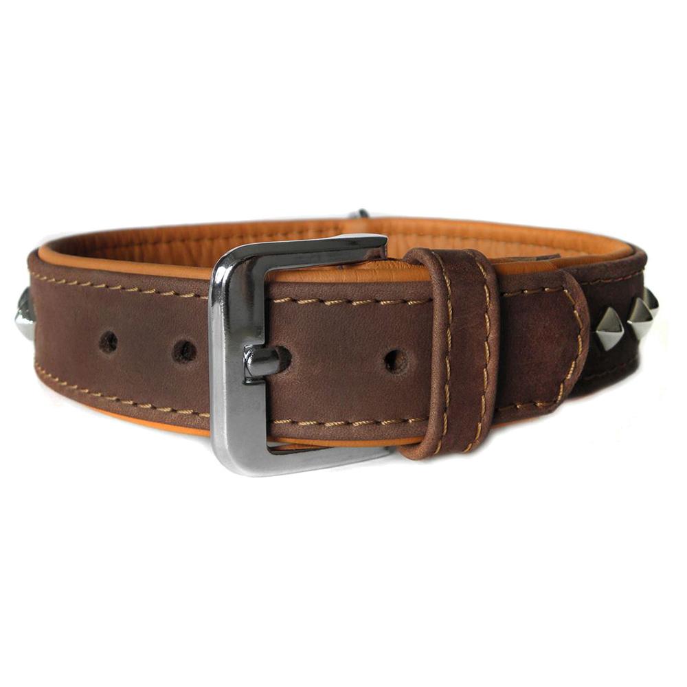 Das Lederband Hundehalsband Roma mocca/cognac