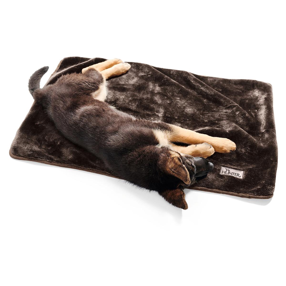 hunter hundedecke konstanz braun. Black Bedroom Furniture Sets. Home Design Ideas