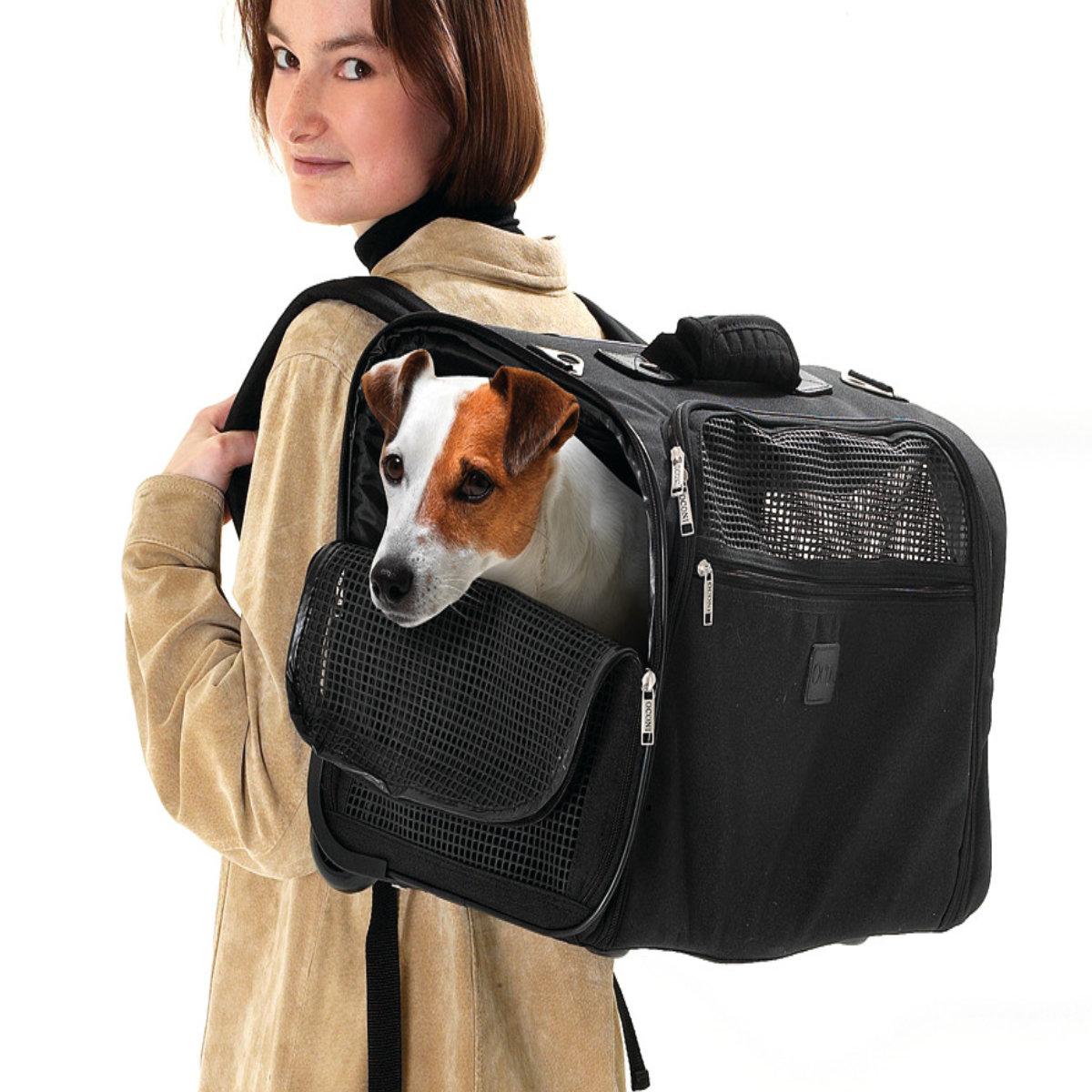 karlie transporttasche rucksack smart trolley f r hunde. Black Bedroom Furniture Sets. Home Design Ideas