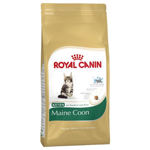 royal canin kitten maine coon 10 kg. Black Bedroom Furniture Sets. Home Design Ideas