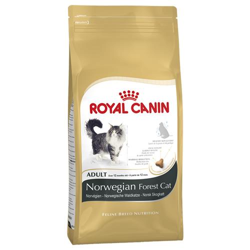royal canin norwegische waldkatze 10 kg. Black Bedroom Furniture Sets. Home Design Ideas